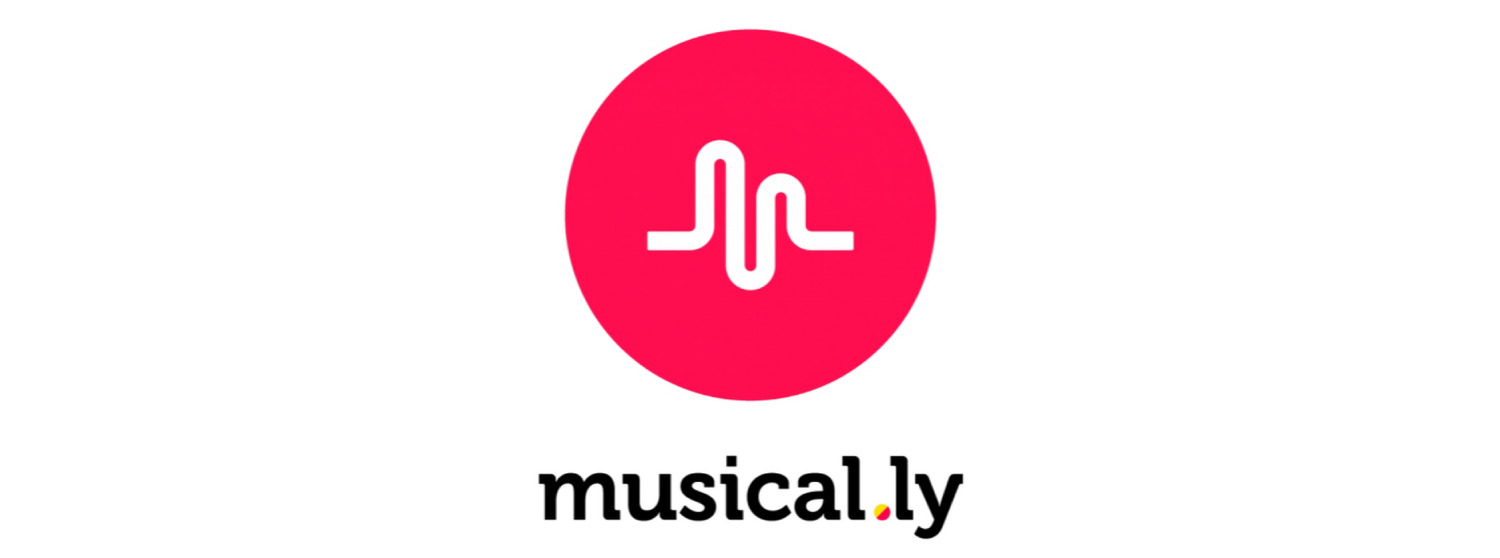 Save Private Musical.ly Videos To Gallery