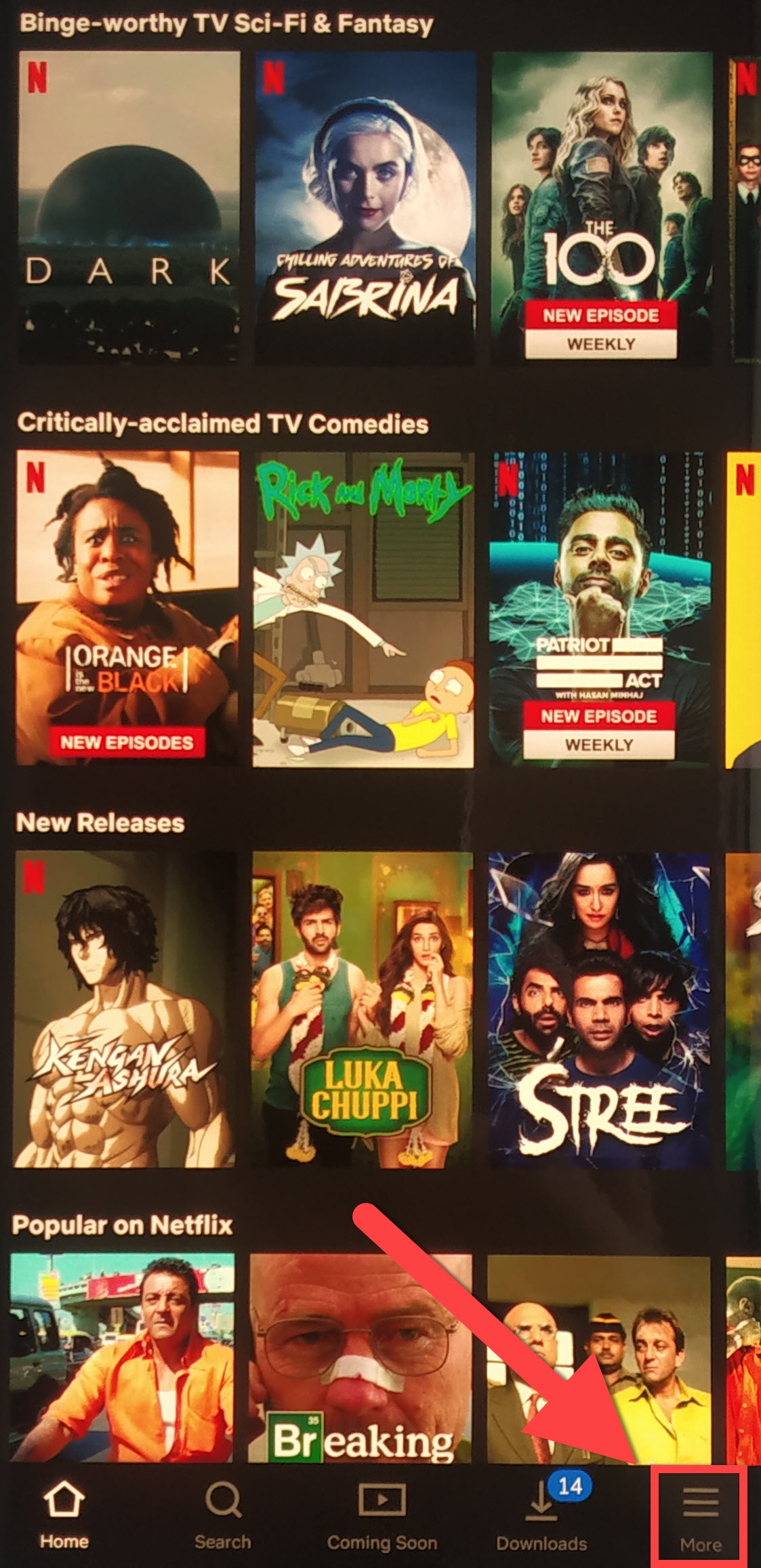 How to Cancel your Netflix Subscription in India