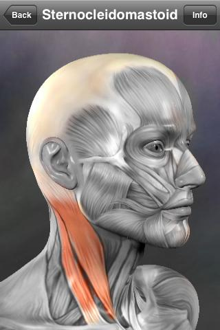 10 Best Apps to Learn Human Anatomy
